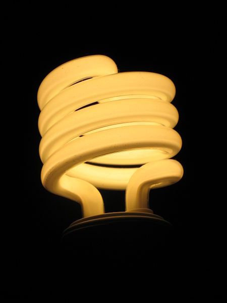 Compact Fluorescent Light (CFL) Bulb